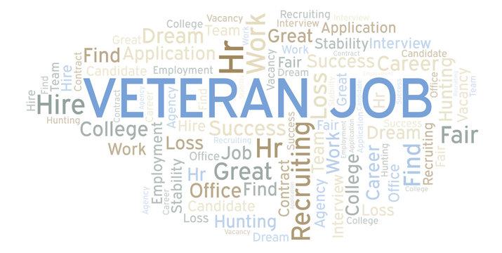 Veteran Job word cloud.