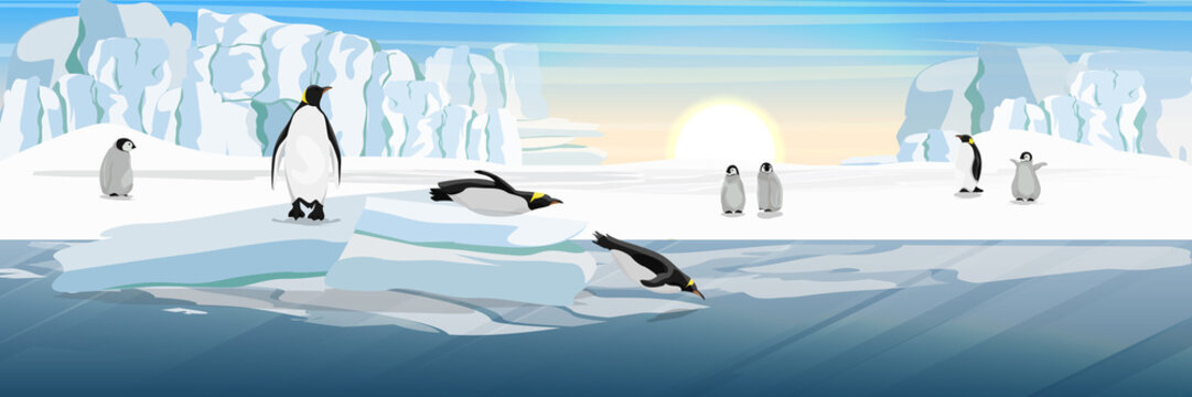 A flock of realistic imperial penguins with many little chicks. Two penguins from the ice floe into the water. The glacier and the snow-covered plains and the cold blue sea. Landscapes of Antarctic.