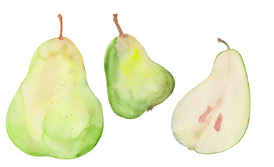 three green watercolor pears watercolor illustration