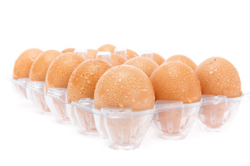 fresh eggs in the panel on white background isolate