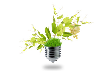 green energy in agriculture concept
