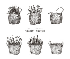 Vector illustration. Wicker baskets with flowers. Ethnic style vector sketch.