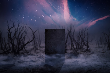 Ancient Places Backgrounds - Monolith Stone in Dead Forest Wall mural