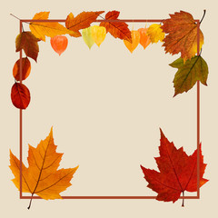 Autumn poster with fall leaves