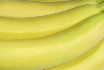 Fragment of a bunch of ripe yellow bananas closeup