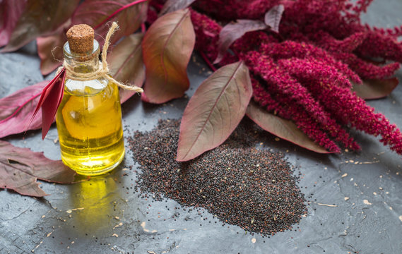 Bottles with amaranth oil, plants and amaranth seeds