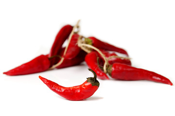 red dry chili pepper in front of bunch of other peppers on white background