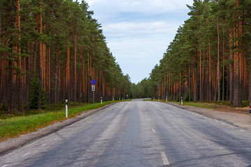 Aerial view of green summer forest with a asphalt road