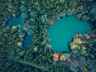 Aerial view of multiple lakes in the forest surrounded by colorful trees