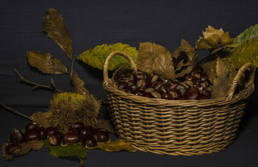 Le castagne, i frutti autunnali