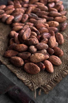 pile of cocoa seeds on rustic sackcloth in dark stage