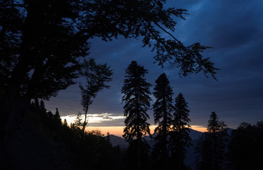 Trees on the slope of Aibga mountain are pictured during sunset outside Krasnaya Polyana near Sochi