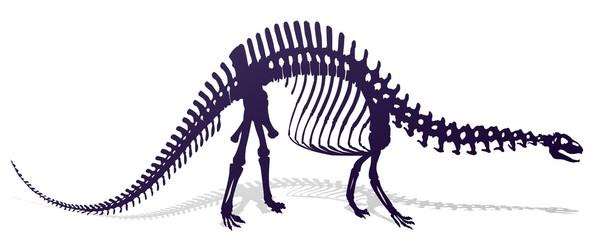 Скелет динозавра.