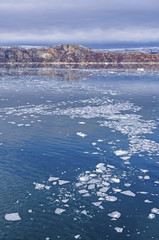 Foto op Aluminium Poolcirkel Bare Rocks and Floating Ice in the Arctic