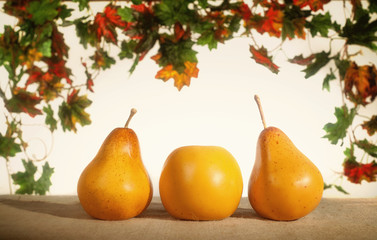 Yellow pears and apples on a white background