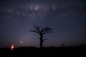 Starry Sky in Outback Australia