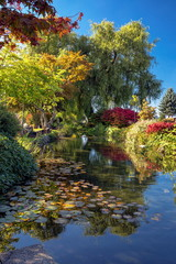 A beautiful autumn day, an ornamental pond in the city cemetery, a reflection of colorful trees and bushes with red leaves in the water, lotus flowers on the mirror surface of the water. Barnaby city,