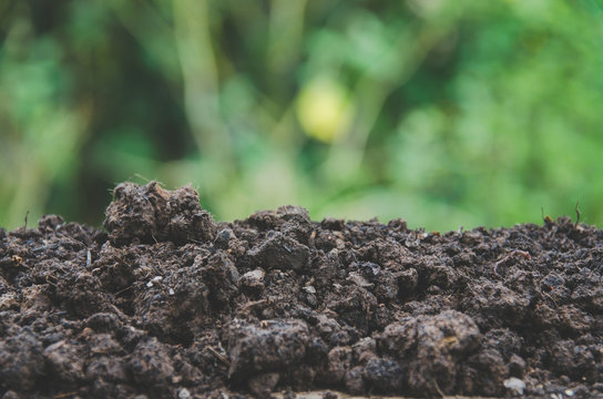 Preparing soil for agriculture and Pile of soil with green background.