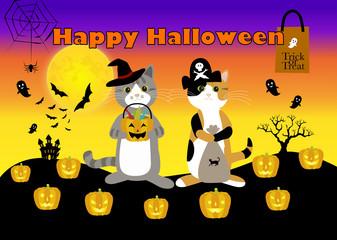 trick or treat! ハロウィーンの個性的なコスプレの猫ら Halloween cats!