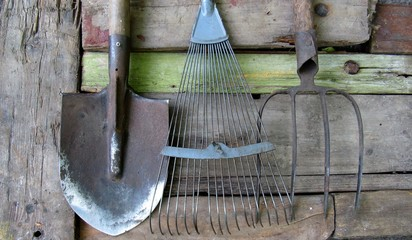 old tools of the garden. fan rake, shovel, pitchfork on old wooden boards