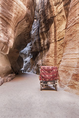 Cart In The Siq Of Petra
