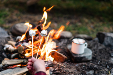 Roasting marshmallows over a bonfire in the forest.