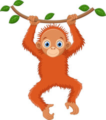 Cute orangutan cartoon hanging on tree branch