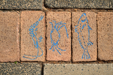 Painting and drawing marine life on stone block at ground of walkway