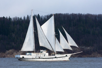 schooner goes past the forest shore
