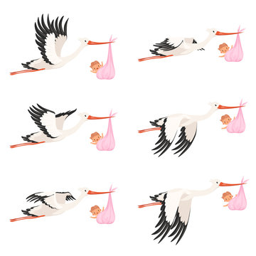 Flying stork frame animation. Bird delivery newborn baby carry vector cartoon characters isolated. Illustration of bird stork with newborn, child delivery