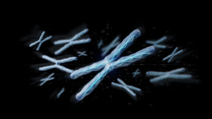 Group of chromosome with DNA inside isolated on a background 3d rendering