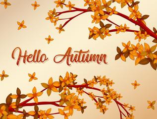 Hello Autumn background concept