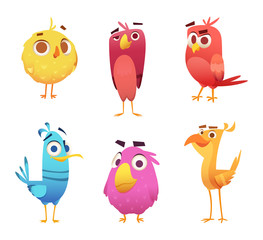 Angry cartoon birds. Chicken eagles canary animal faces and feathers vector game characters of colored birds. Illustration of color bird animal