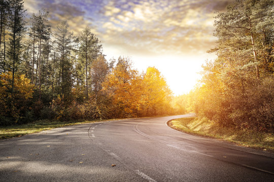 Autumn road background and free space for your decoration.