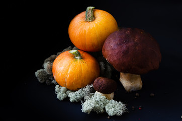 Pumpkins and mushrooms on a black background