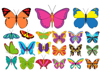 vector, isolated, multicolored butterflies, set