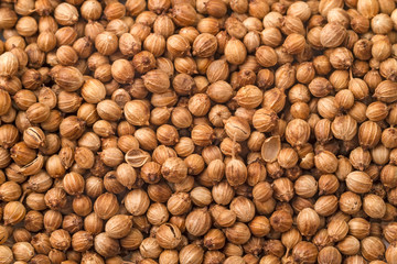 Background of dried coriander seeds
