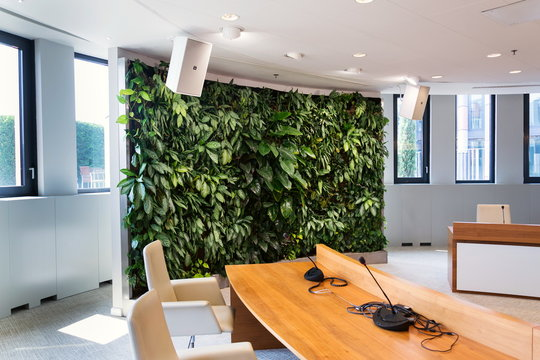 Living green wall, vertical garden indoors with flowers and plants under artificial lighting in meeting boardroom, modern office building