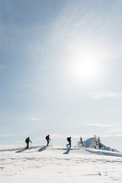 Group of skiers walking on a snowy mountain