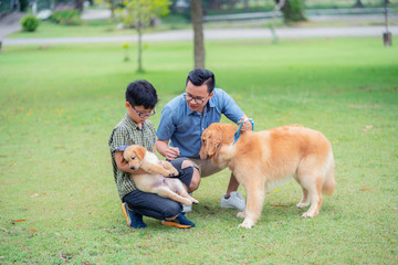 Two brothers play with golden retriever dog and puppy in the garden.
