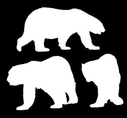 three large polar bears isolated white silhouettes