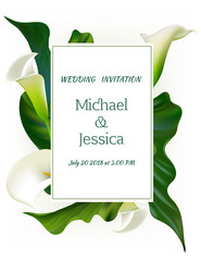 Flowers Floral background. Callas. Green leaves. Flower pattern. Bouquet. Frame. Wedding invitation.