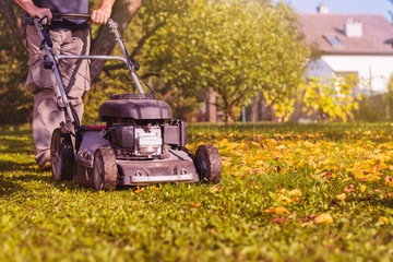 Mowing the grass with a lawn mower in garden at early autumn