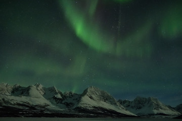 Landscape of northern lights over the Norway fjord in winter.