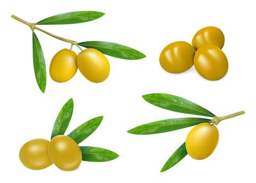 Fresh olives icon set. Realistic set of fresh olives vector icons for web design isolated on white background