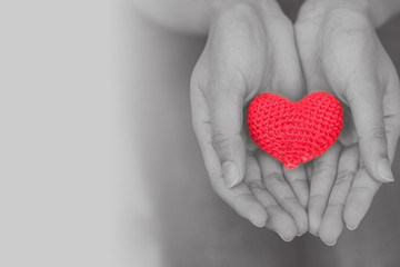 heart in girl hand for giving share love to other concept with copy space