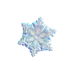 Snowflake isolated on white background. Macro photo of real snow crystal: elegant star plate with fine hexagonal symmetry, six short, broad arms and glossy, relief surface with complex details inside.