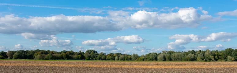 Landschaftspanorama mit Wolkenhimmel mit Wald und Feld. Standort: Deutschland, Nordrhein - Westfalen, Borken