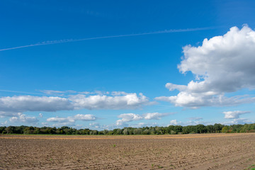 schöner blauer Wolkenhimmel über abgemähtes Feld. Standort: Deutschland, Nordrhein - Westfalen, Borken