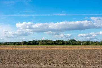 schöner blauer Himmel mit Wolkengebilde über Feldern. Standort: Deutschland, Nordrhein - Westfalen, Borken